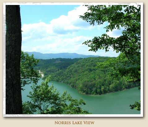 Norris-lake-view
