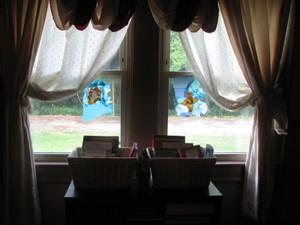 Window_leaves